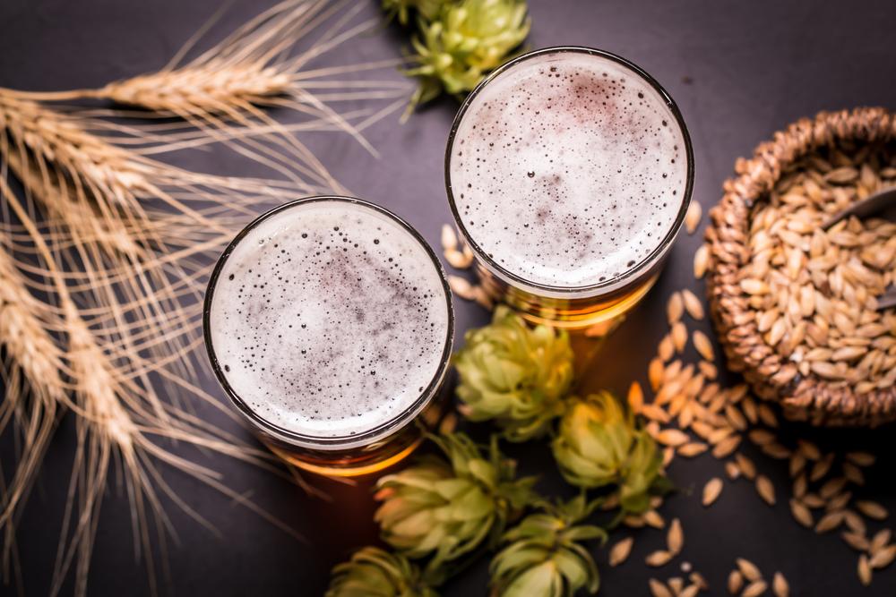 Degustación cervezas artesanales islandesas