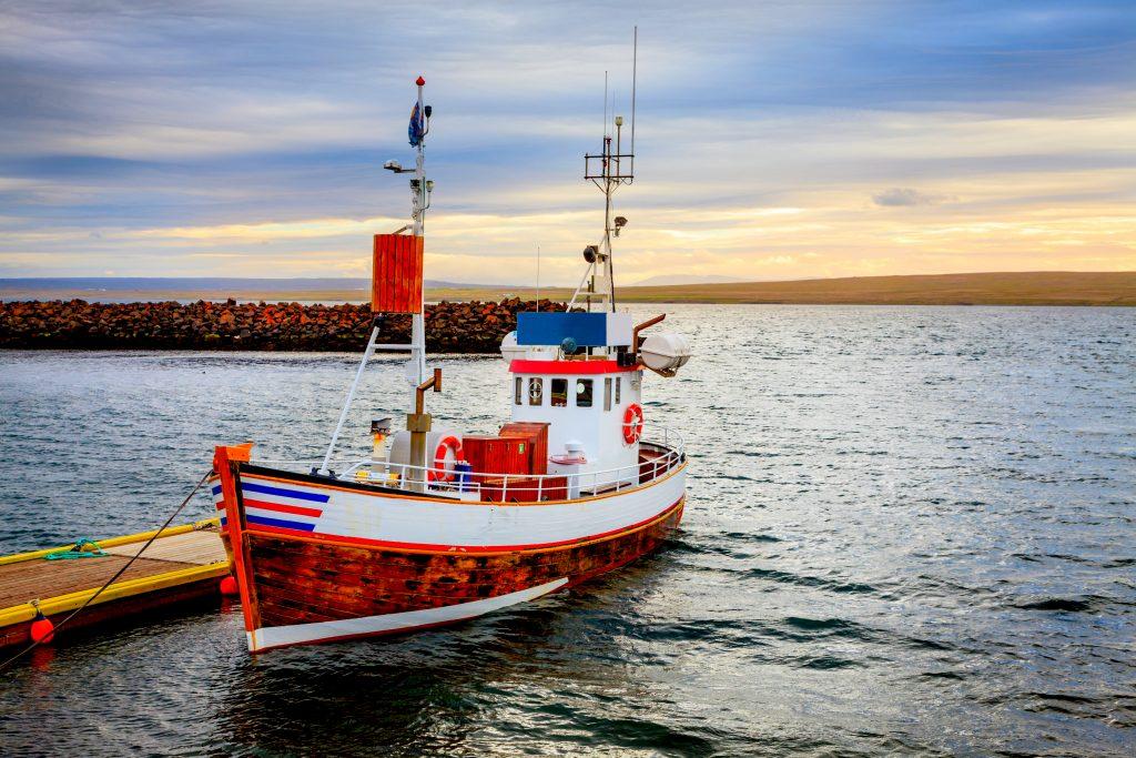 Barco pesquero islandés - El bacalao y la pesca en Islandia